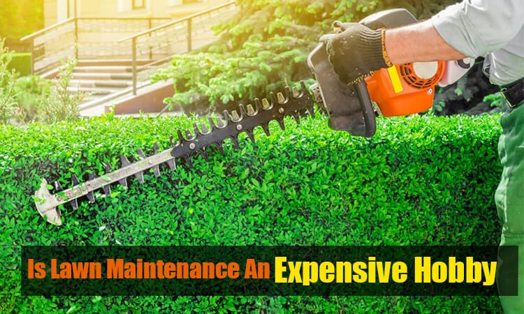 Is lawn maintenance an expensive hobby